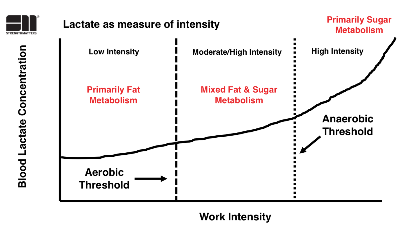 Aerobic & Anaerobic Thresholds