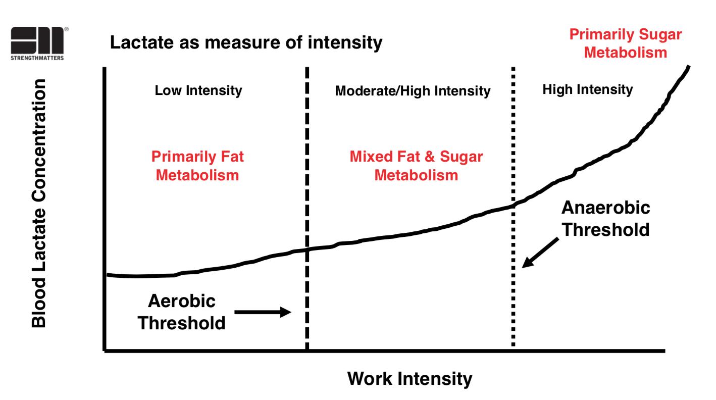 Aerobic & Anaerobic Thresholds